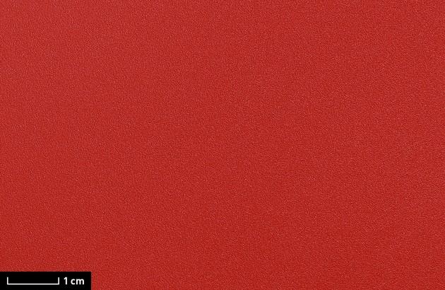 resimdo CO-BA-S147 Rough Lobster Klebefolie Rot selbstklebend für Wände, Wohnwände und Trennwände Detail