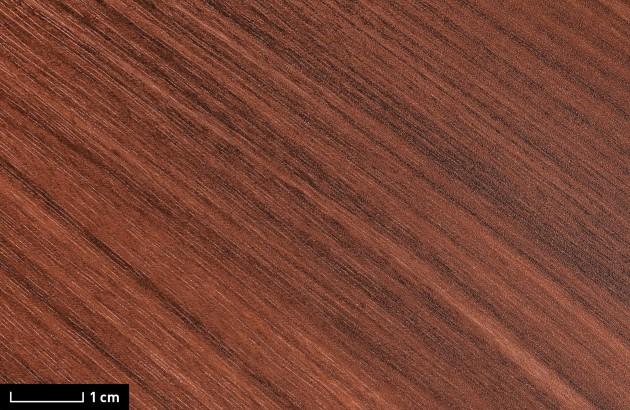 resimdo CO-WO-W276 Real Cherry Rose Dekofolie rot für Schreibtisch, Regal, Wand, Küchenmöbel Detail